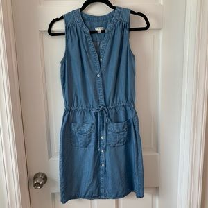 Spense Denim Dress